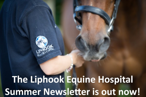 Liphook Equine Hospital 30 Aug 2013
